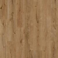 Картинка - Ламинат Balterio Balterio Traditions Forest Oak 61006