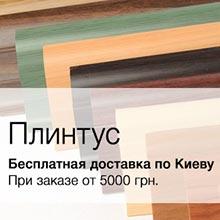 Бесплатная доставка по Киеву при заказе от 5000 грн.